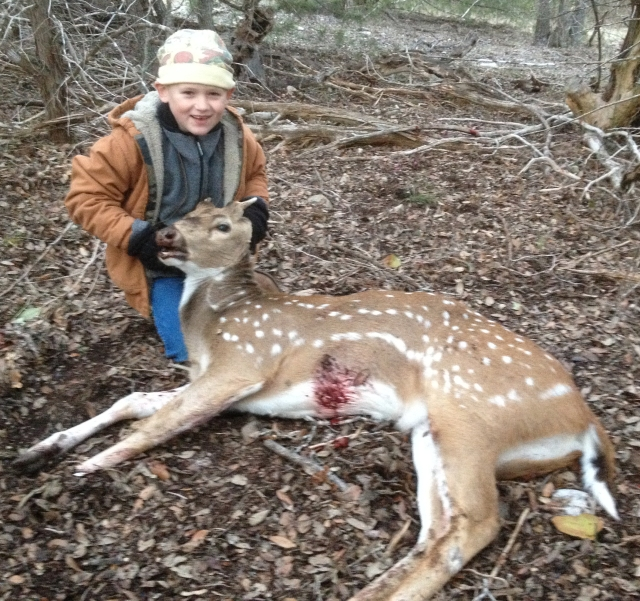 Dutch Axis deer 2013