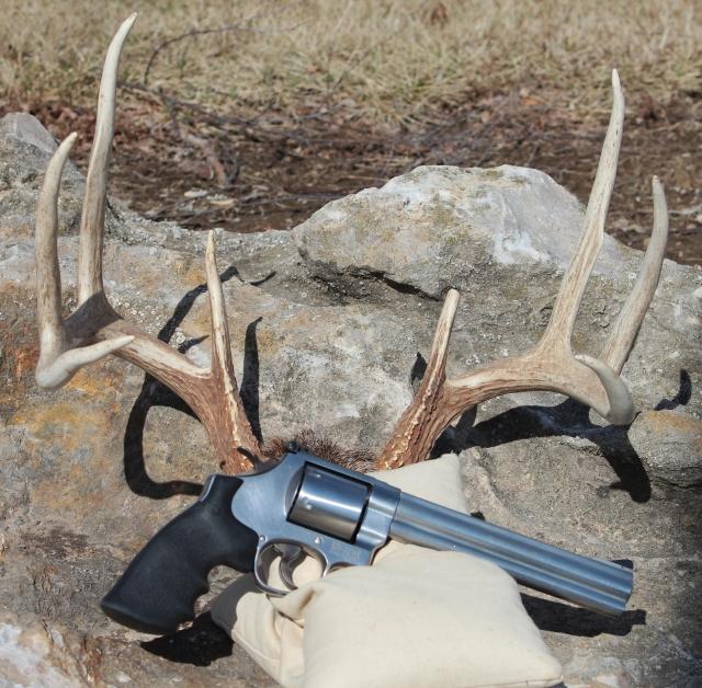 Horns_and_Handgun