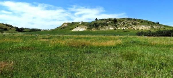 1st Prairie Dog Town