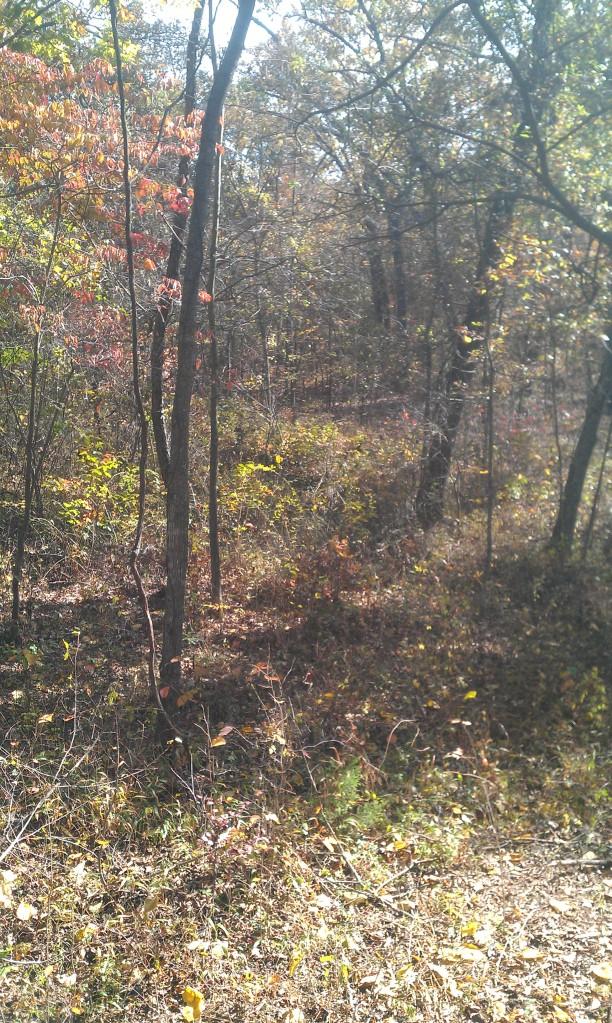 hunting land