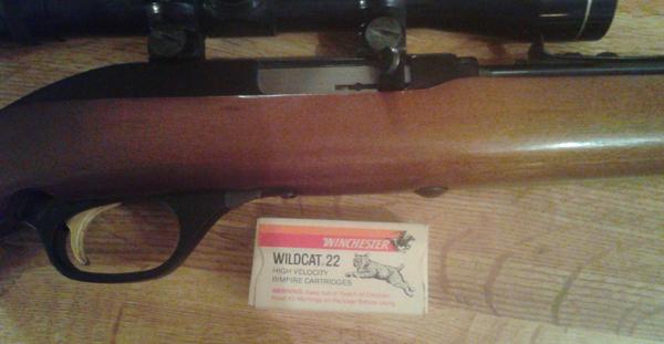 garys-first-22-lr-gun